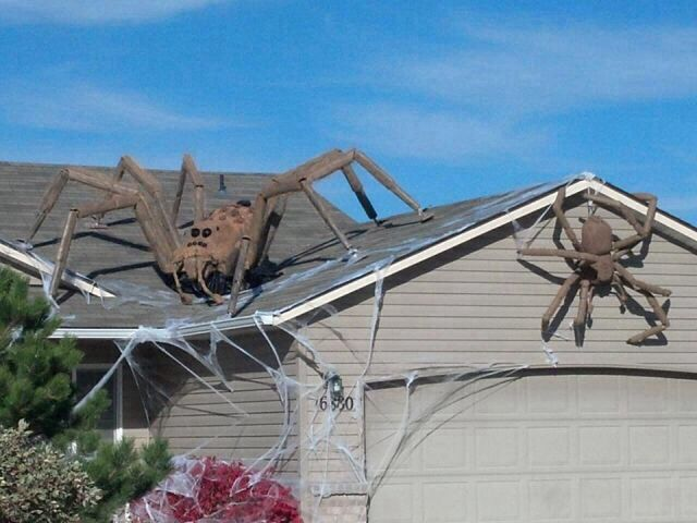 Is This A Halloween Decoration Or A Picture Of A House In