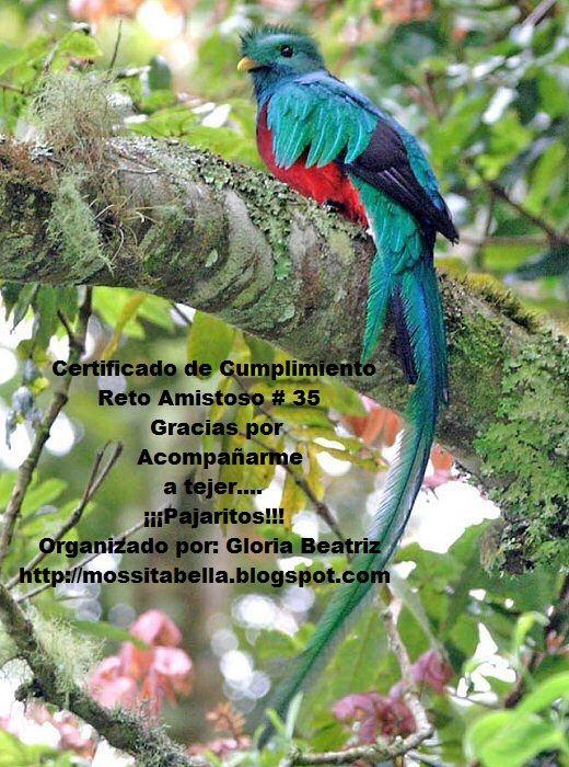 crochet quetzalcoatl | este con el quetzal el ave nacional de guatemala