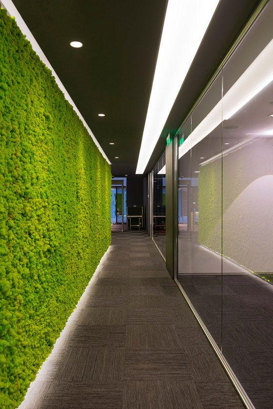 traditional office corridors google. Mp-architects ENISA - Office Facilities Traditional Corridors Google Y