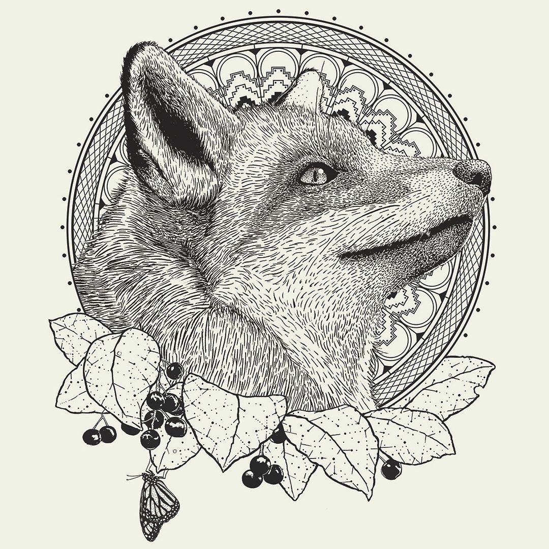 New Fox Tee Design The Fox Plants And Butterfly Were All Hand Drawn