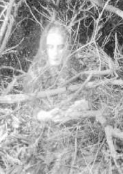 paranormalhq023