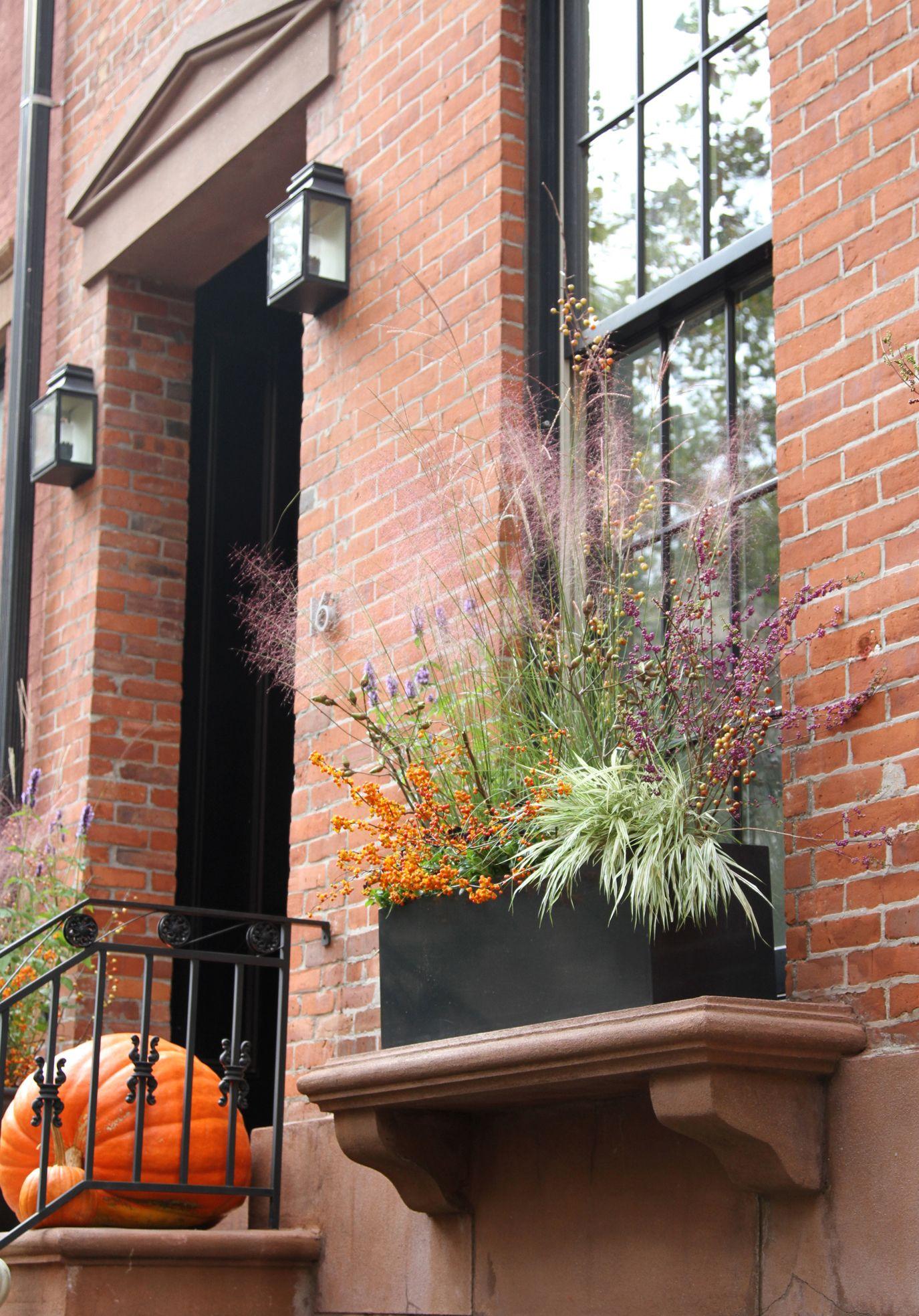 All Gardenista Garden Design Inspiration Stories In One Place. Fall PlantersHanging  PlantersOutdoor ...