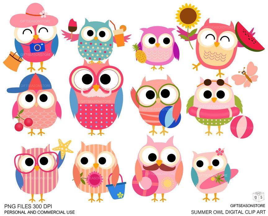 Owl summer. Owls digital clip art