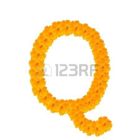 Letra Q. Alfabeto de las flores de color amarillo y naranja. Aisladas sobre fondo blanco. Con trazado de recorte.