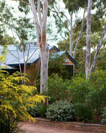 Gardening with native plants   Australian garden ...