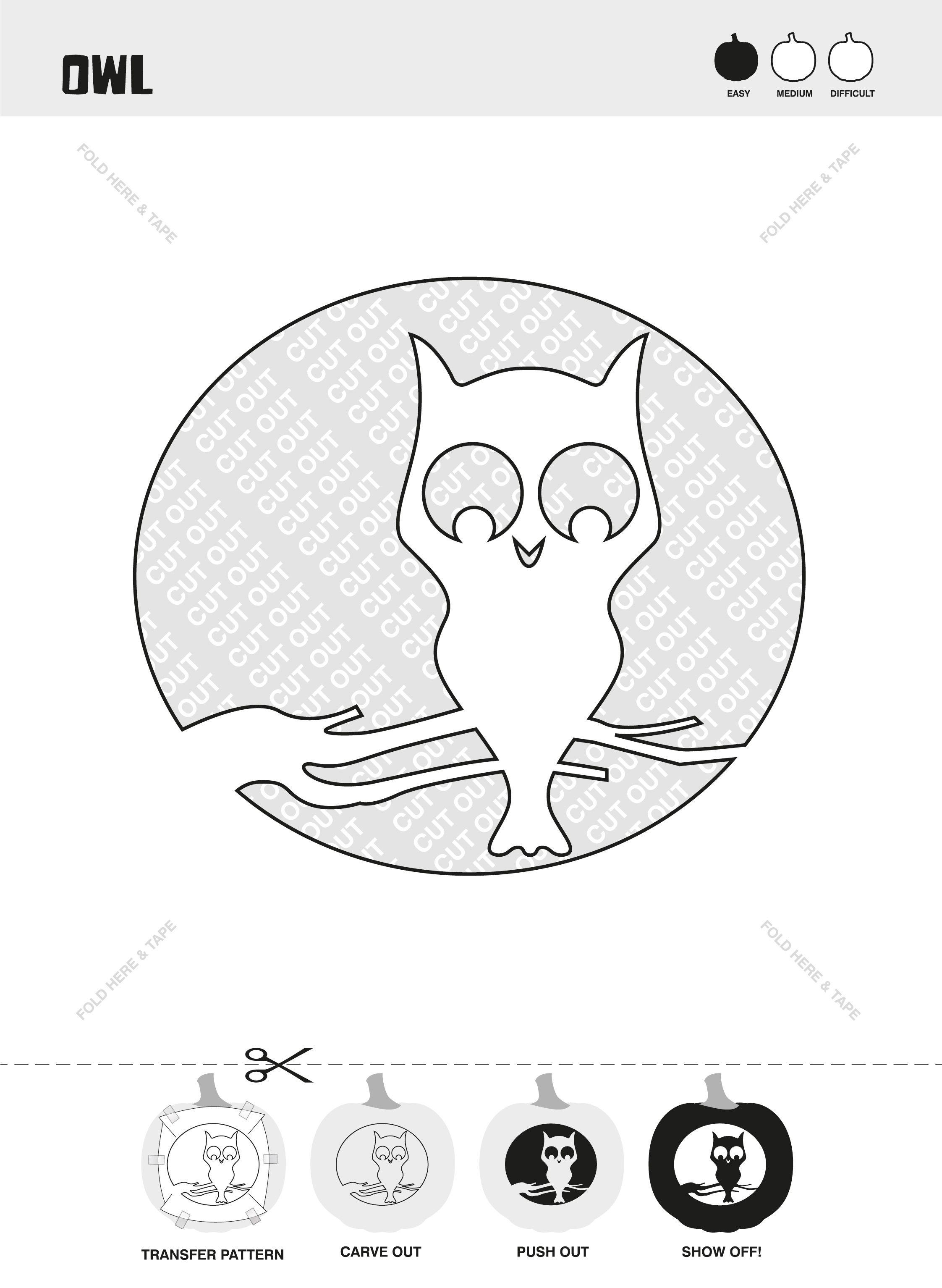 Owl Stencil Pumpkin carving kits, Halloween pumpkins