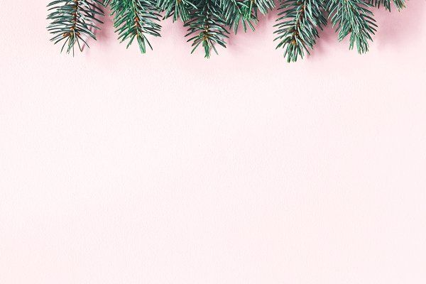 Christmas tree branches (с изображениями) | Рождественский ...