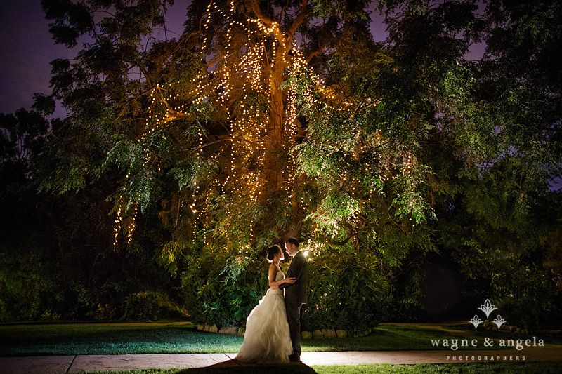 Twin Oaks Garden Estate Wedding Photos Love The Tent Dress Colored Lights