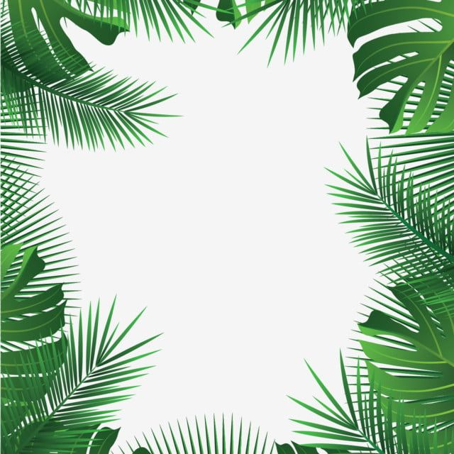 Tropical Leaves Frame Palm Summer Leaves Tropical Vector Png And Vector With Transparent Background For Free Download Bunga Tropis Bingkai Bunga Tropis
