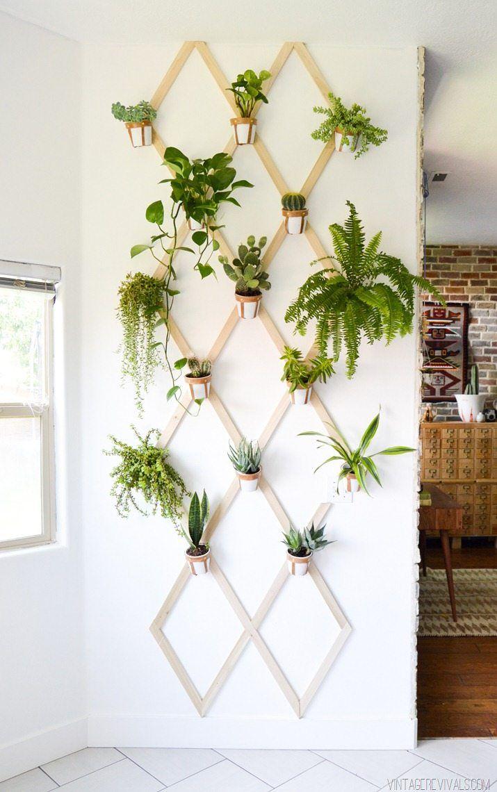 Diy Wood And Leather Trellis Plant Wall Indoor Mini 400 x 300