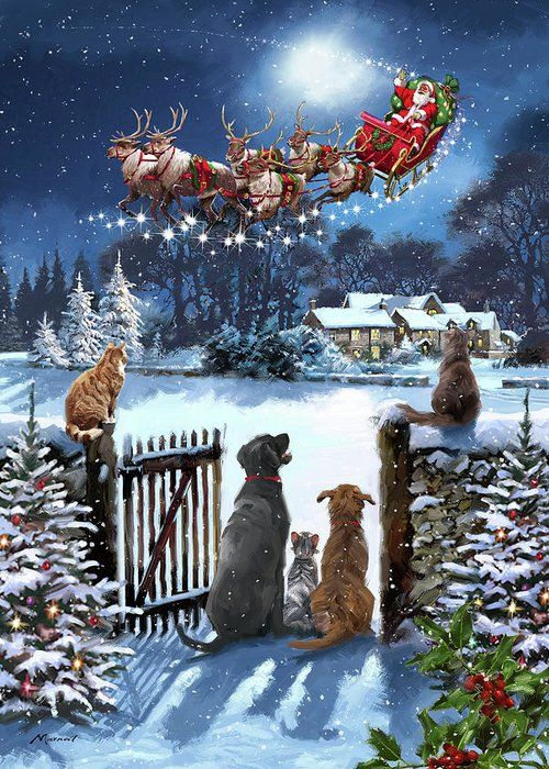 1696 Cats And Dogs Watching Santa Greeting Card fo