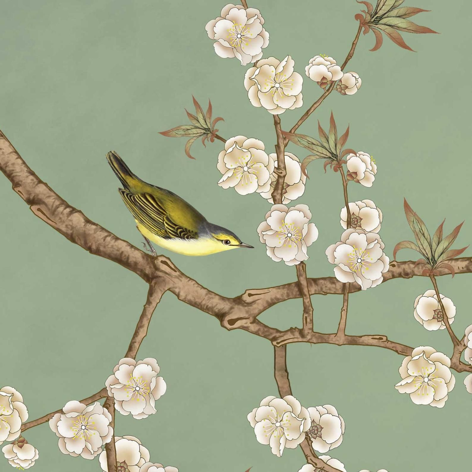 Nauzha Chinoiserie Wallpaper Vintage Bird Wallpaper Etsy Chinoiserie Wallpaper Vintage Bird Wallpaper Bird Wallpaper