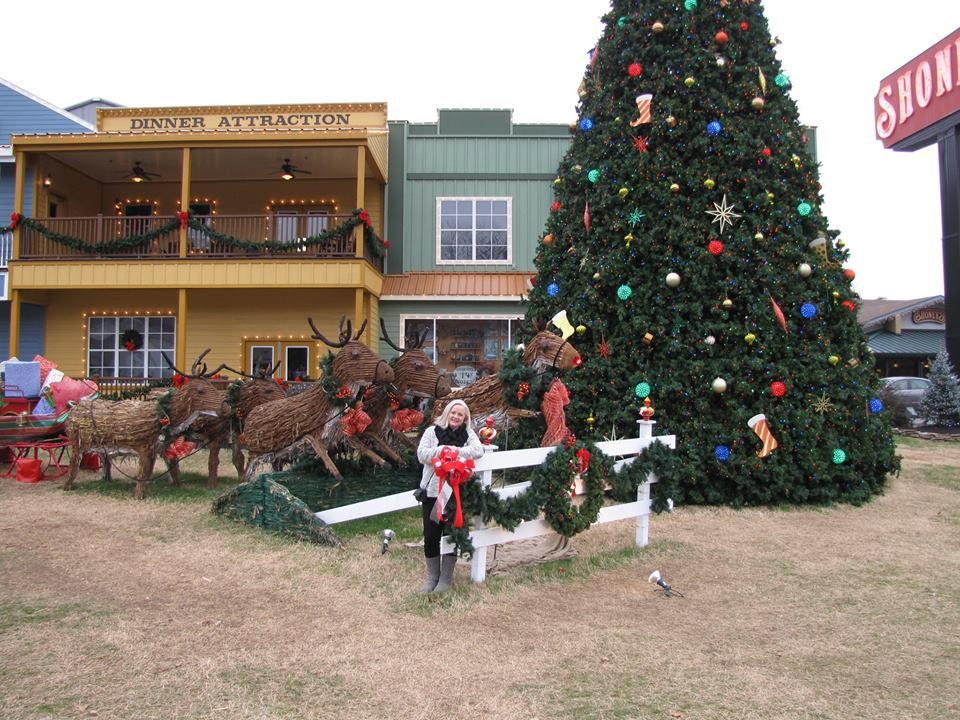 dixie stampede christmas show pigeon forge tn