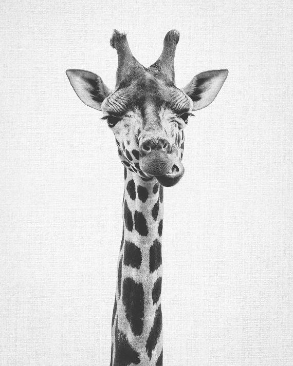 Giraffe Print Printable Art Nursery Print Black And White Nursery Decor Nursery Animal Wall Art Kids Printable Art Safari Animal Print Safari Animal Prints Animal Wall Art Nursery Animal Wall Art