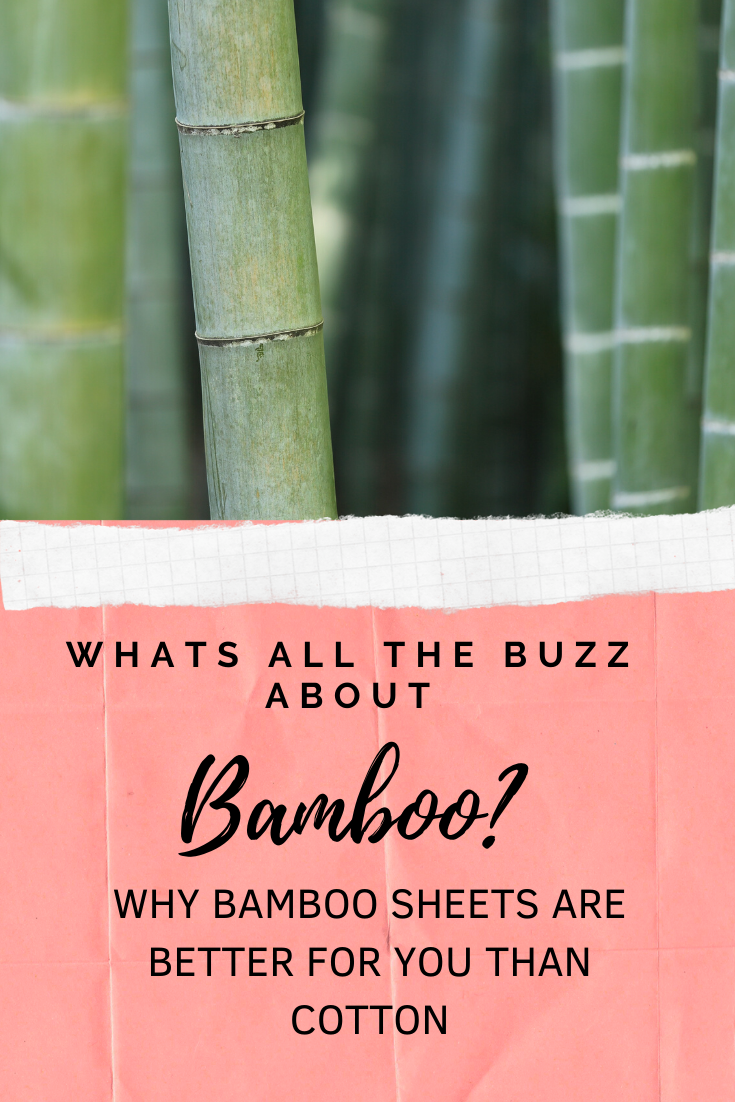 7 Interesting Facts About Bamboo Vs Cotton Sheets That You Will