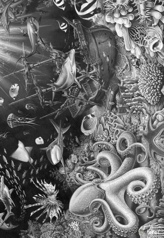 Pin de Molly Snyder en Grayscale Coloring   Pinterest   Pintar ...