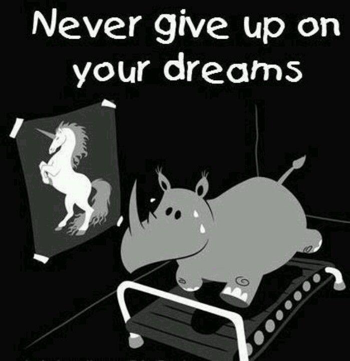 Siempre m gustaron los rinos!!!