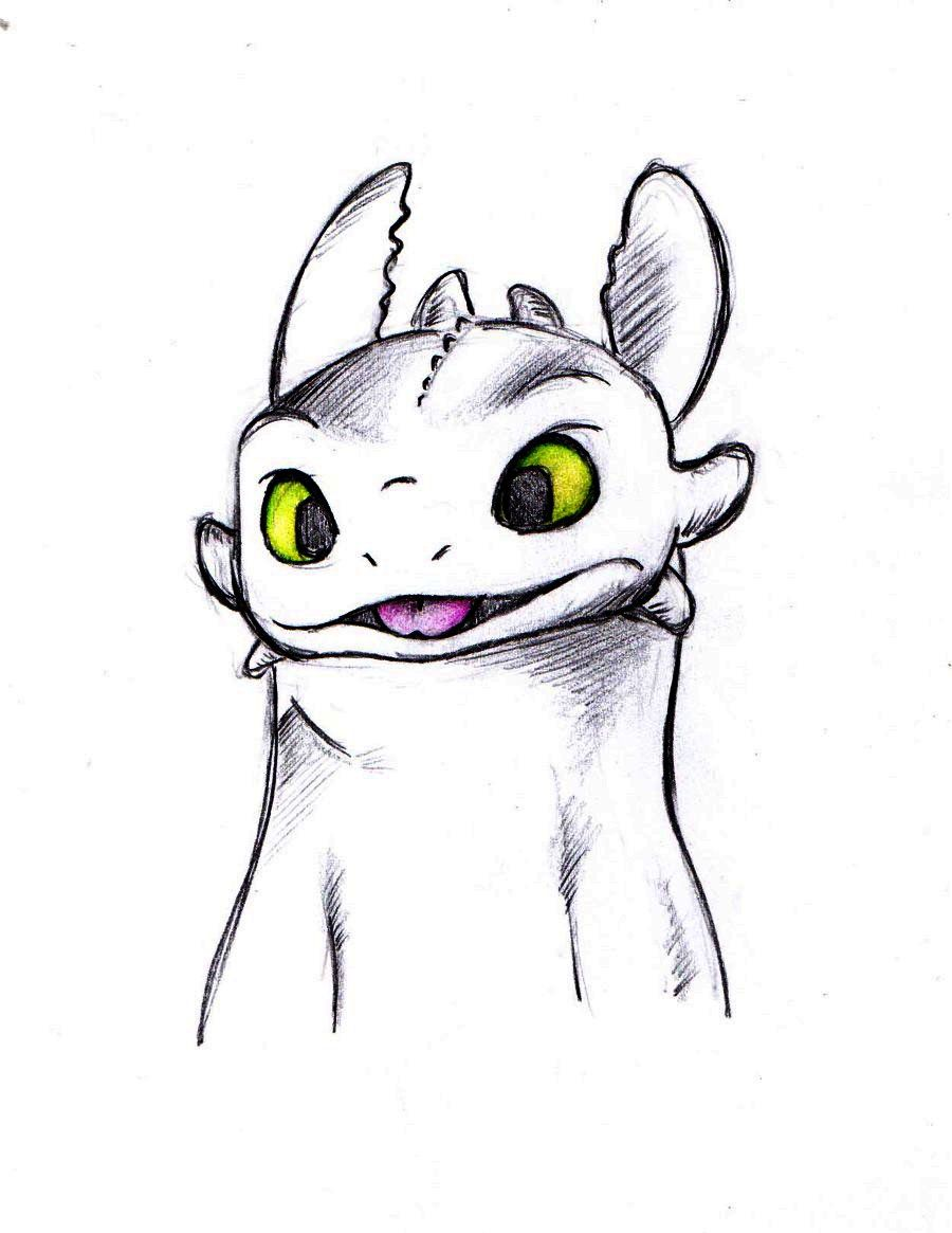 Benguela Cooles Pinterest How Train Your Dragon Dragon Und