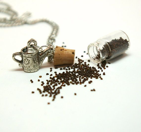 Seed Bottle Necklace Micro Mini Apothecary Bottle Filled
