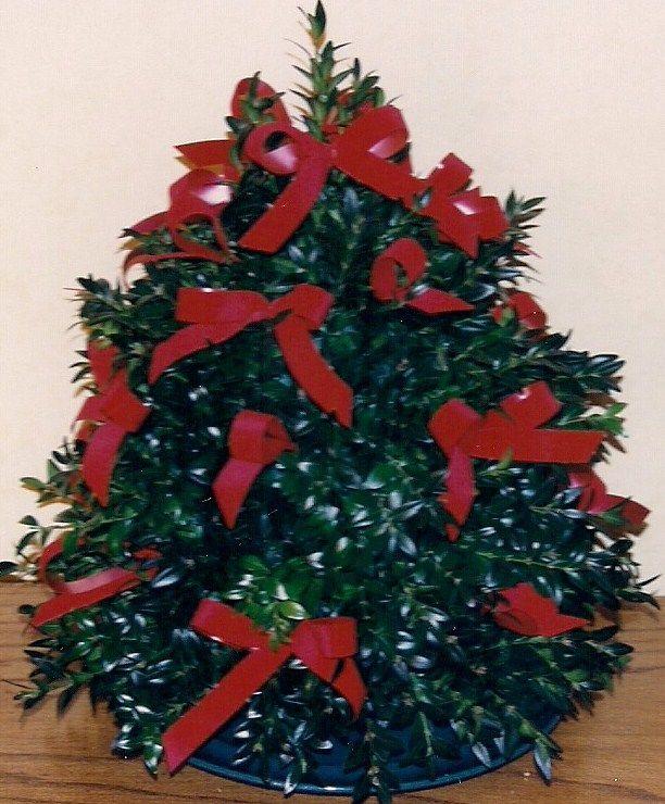 Red Velvet Bow Boxwood Tree