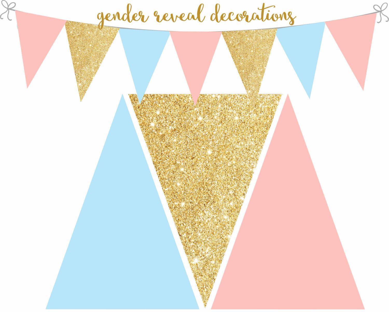 Gender Reveal Decorations, Gender Reveal printable banner ...