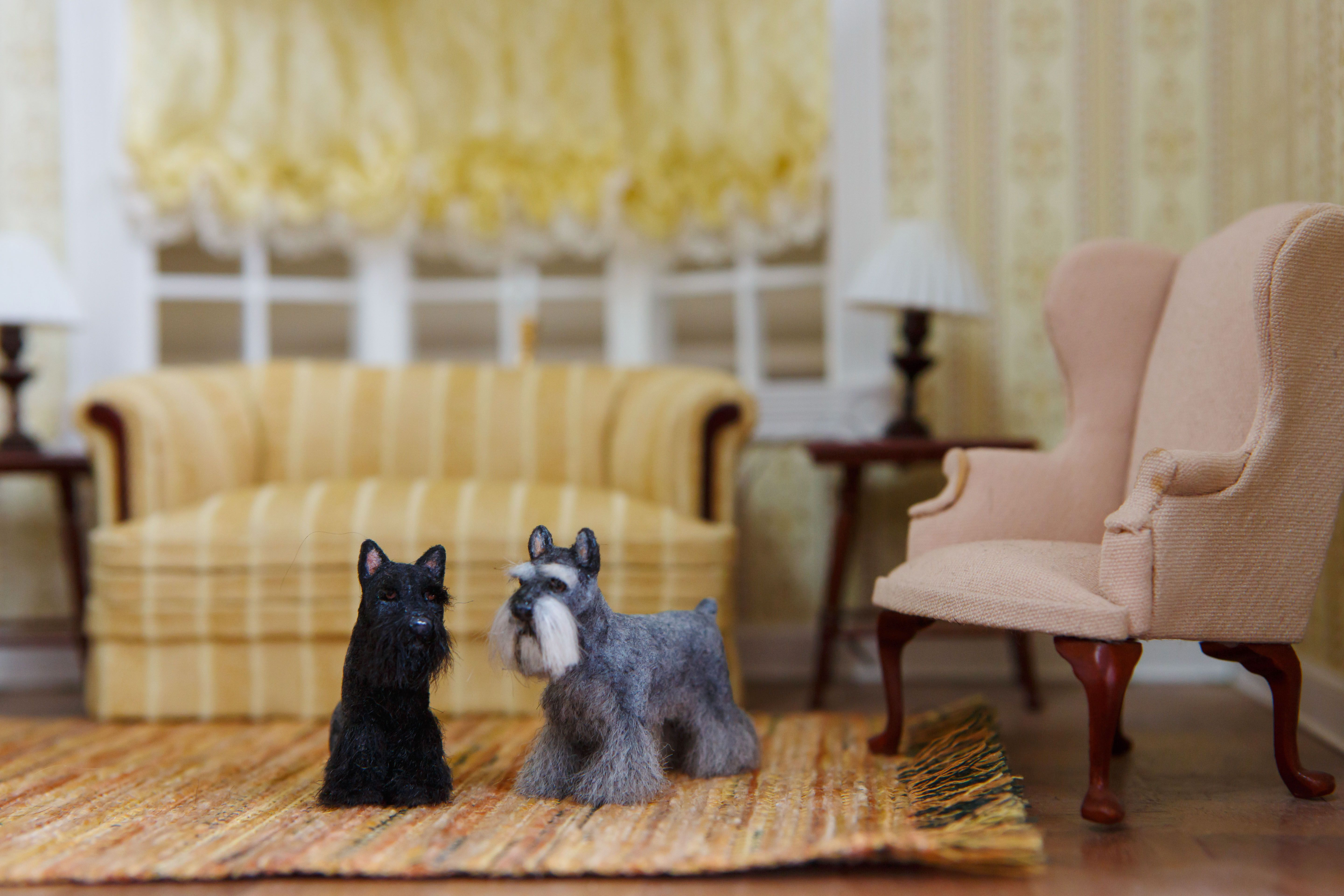 Dollhouse Miniature Schnauzer  1:12 Scale Artist Created and Furred  Visit my site on Etsy!