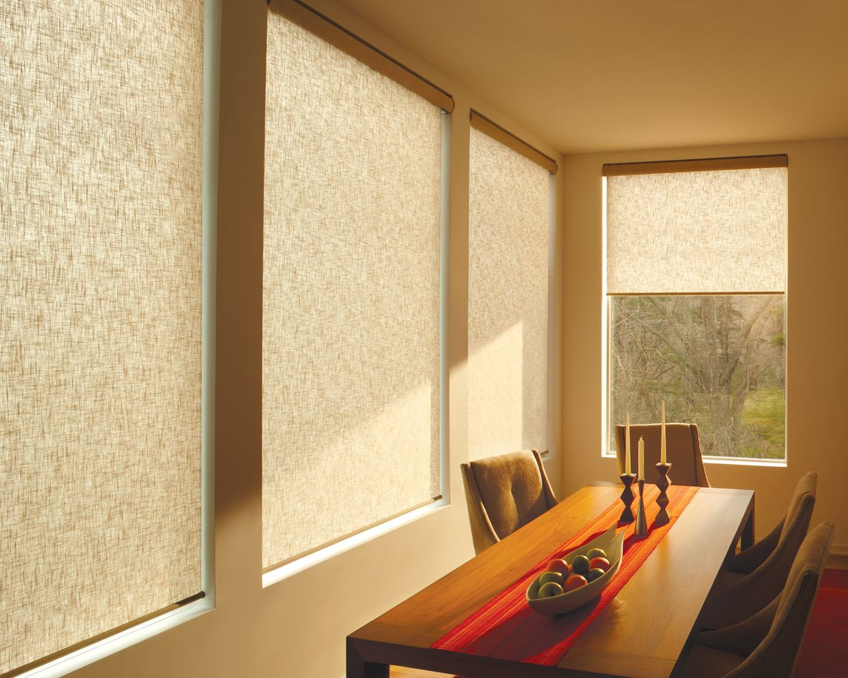 Roller shades can be so simple, yet beautiful, yet classic, yet ...