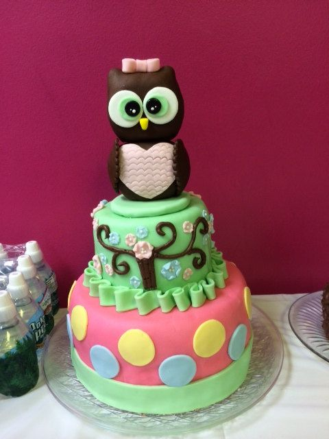 Custom Homemade Owl Birthday Cake Owl birthday cakes Birthdays