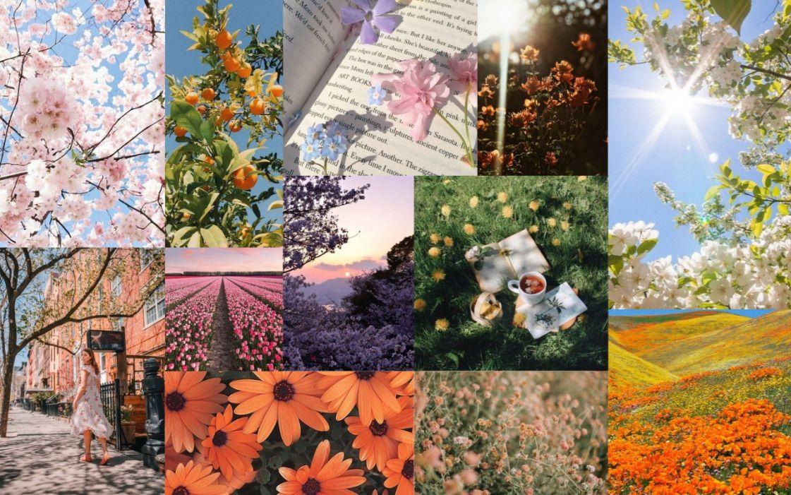 Wallpaper Spring Flower Aesthetic Metadinhas