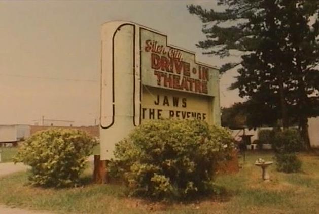 Siler City Drive In D Siler City Story Setting North Carolina Homes