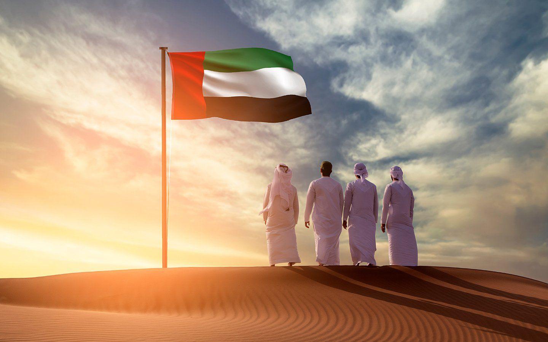 مبادرات حكومية تؤهل شباب الإمارات للحد من التأثيرات المجتمعية للأوبئة Movie Posters Movies Poster