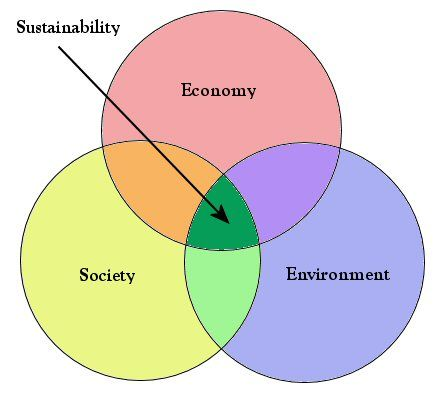 What Does Sustainabilitymean This Diagram Helps Explain That Its