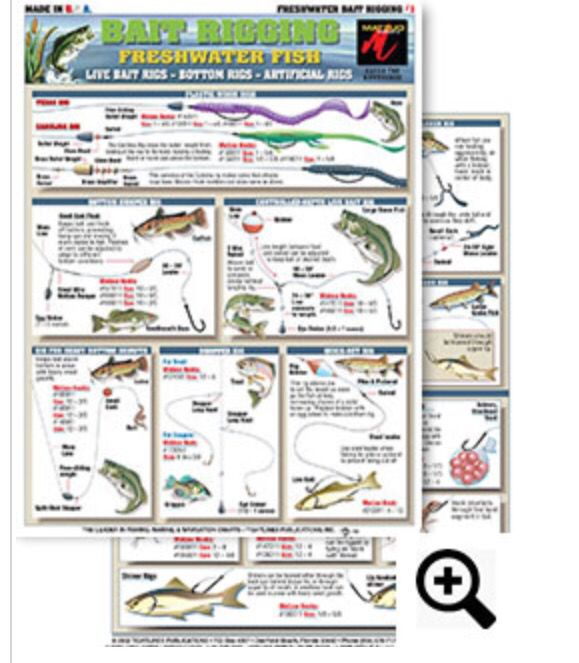 Bait Rigging Chart 1 Freshwater Contains Illustrations For The Following Baits Riggs Bottom Bumper Rig Controll Live Bait Rig Fishing Tips Crappie Rigs