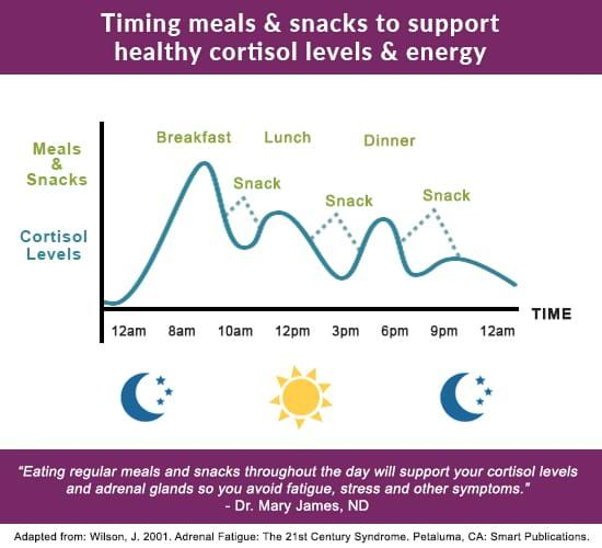 Adrenal Stress Hormones Chart Describing Eating To Support Cortisol Levels