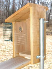 nest box plans to build your own nest box for the eastern bluebird like the predator guard