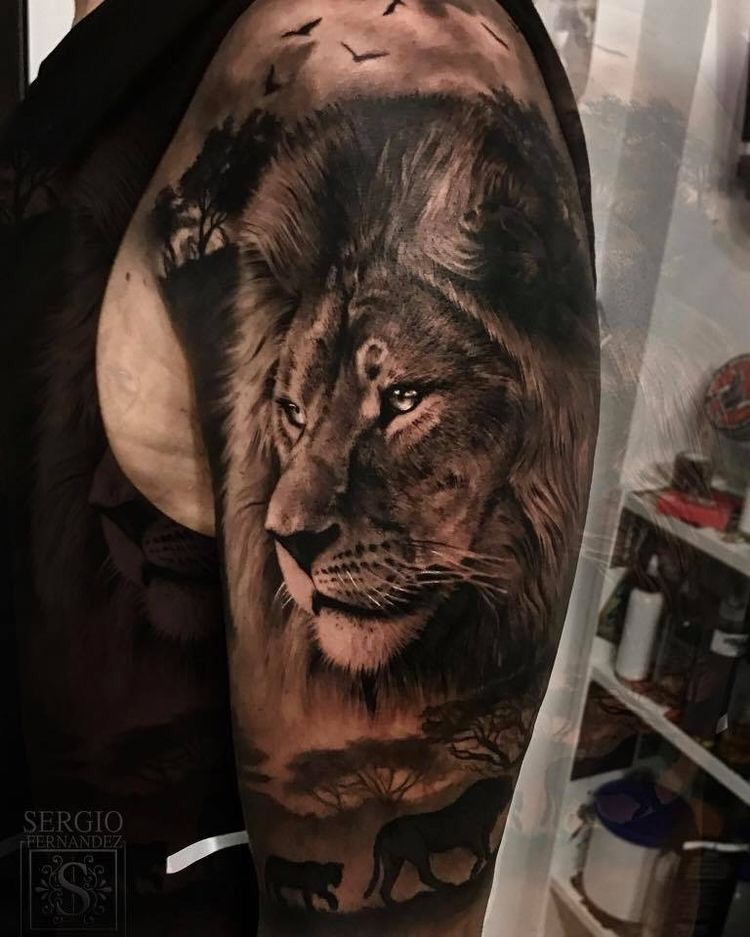 Tattoo Spalla Uomo Leone | TeachersHub