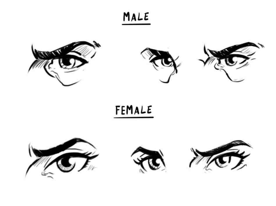 How To Draw A Face Drawing The Male And Female Head Front And 3 4 Female Face Drawing Male Face Drawing Face Drawing