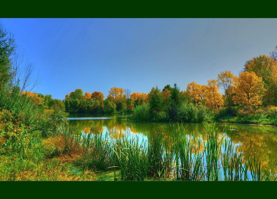 My Golden Pond by AZ Imaging on 500px