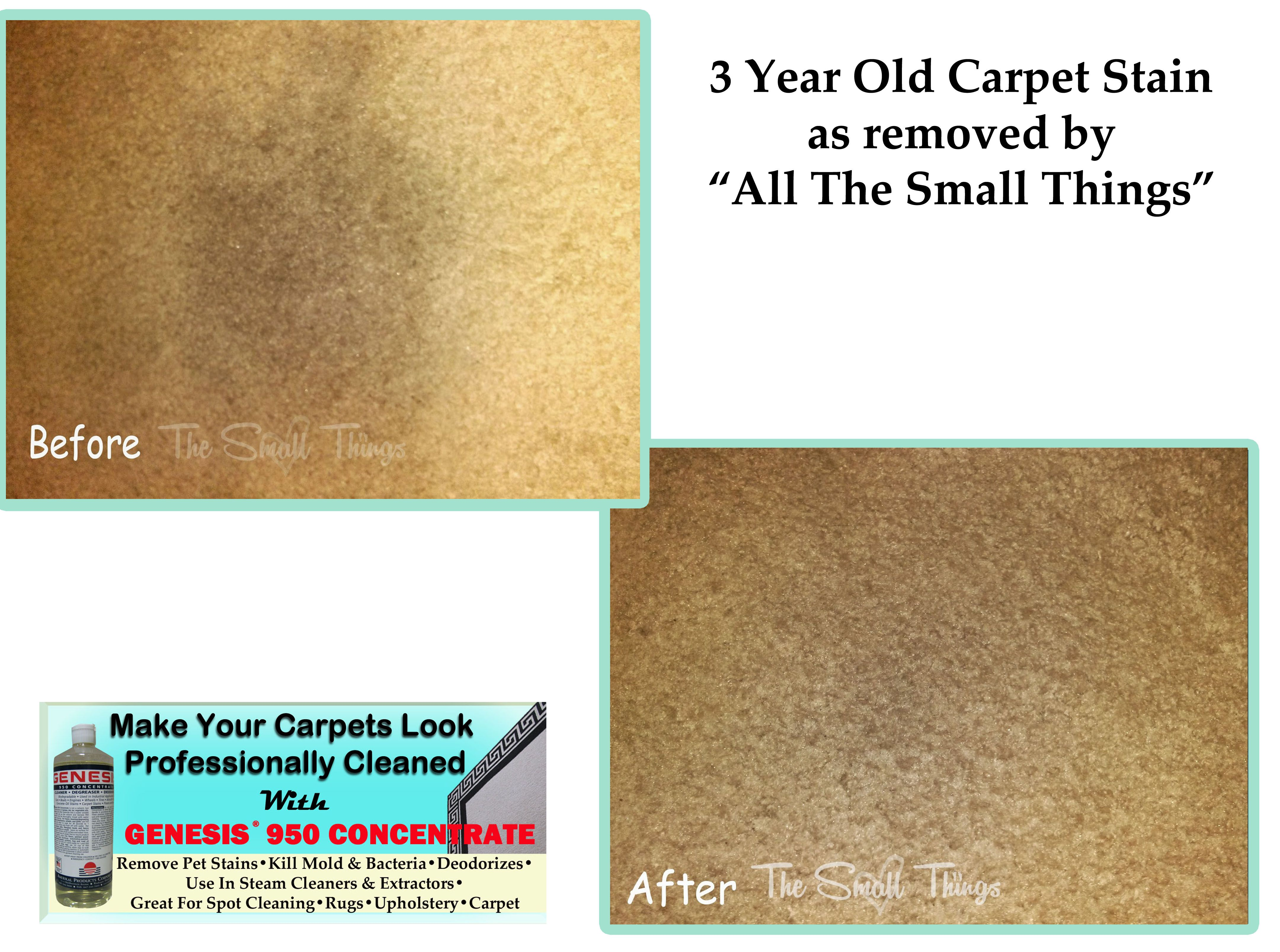 Stain Remover Before After Carpet Stains As Removed By The Small Things How To Clean Old Carpet Stains Remove Pet Stains Pet Stains How To Remove