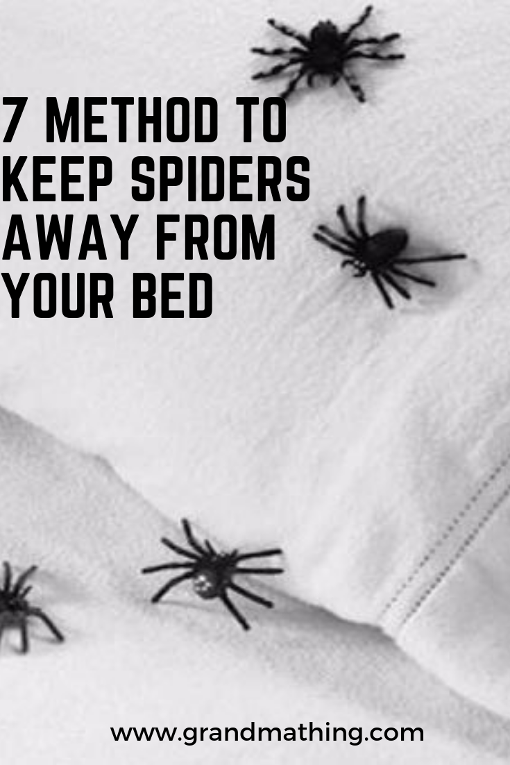 7 Method To Keep Spiders Away From Your Bed Keep Spiders Away