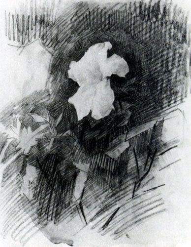 М. А. Врубель Белая азалия. 1886-1887 | Рисунки, Художники ...