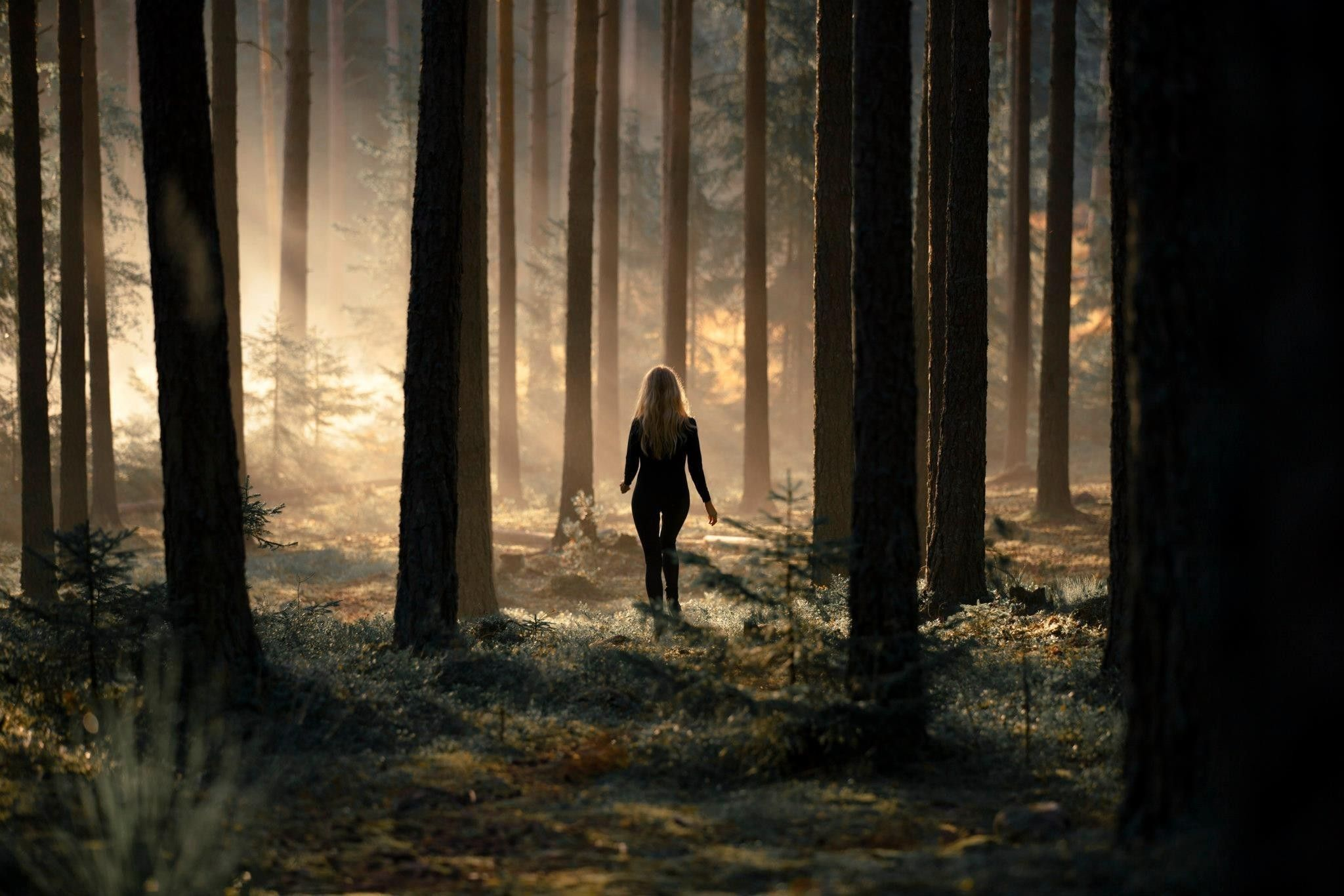 Alone Girl in Forest Wallpaper