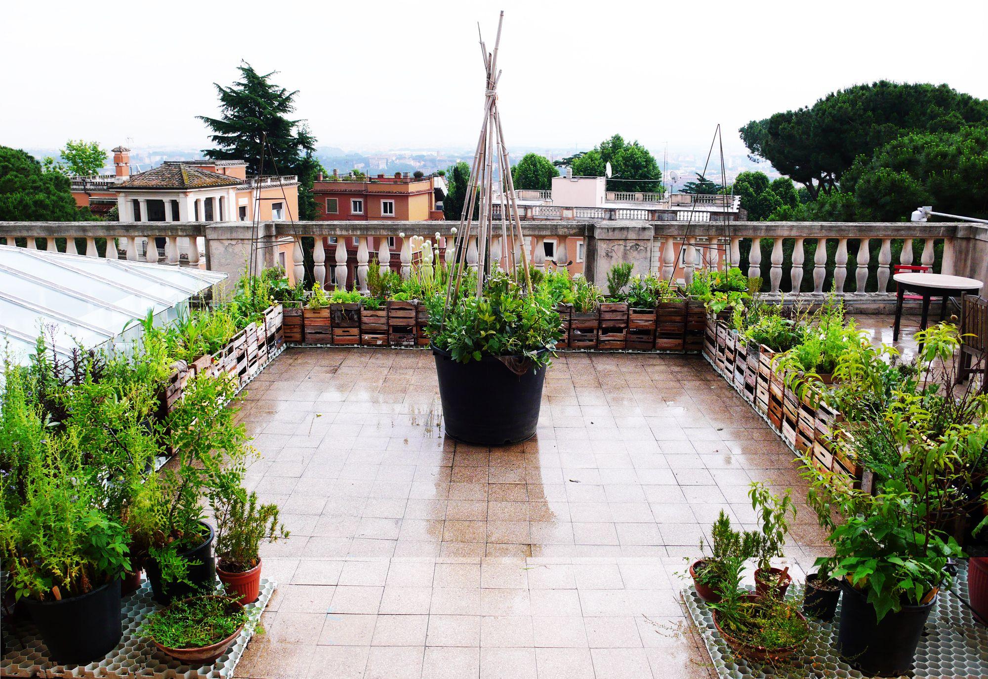 Roof Garden Tiles Google Search Rooftop Garden Roof Garden Garden Tiles