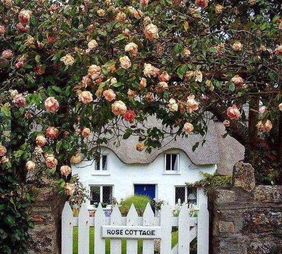 Puertas que se abren a maravillosos jardines, ¿cuál es tu preferida?