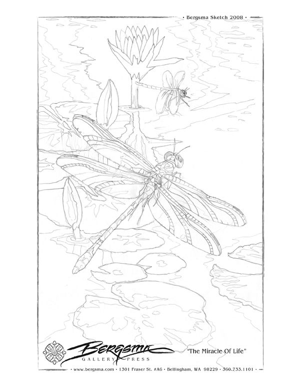 Free to download drawing outlines for painting from Jody Bergsma lots of different ones