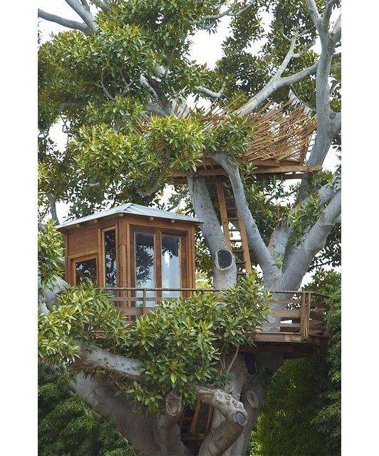 Tree House Idea   Home And Garden Design Ideas