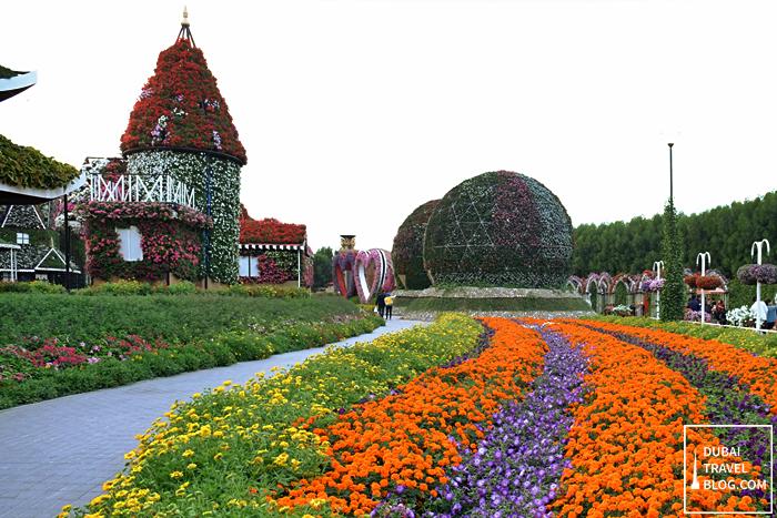 dubai flower garden park in dubai pinterest dubai location