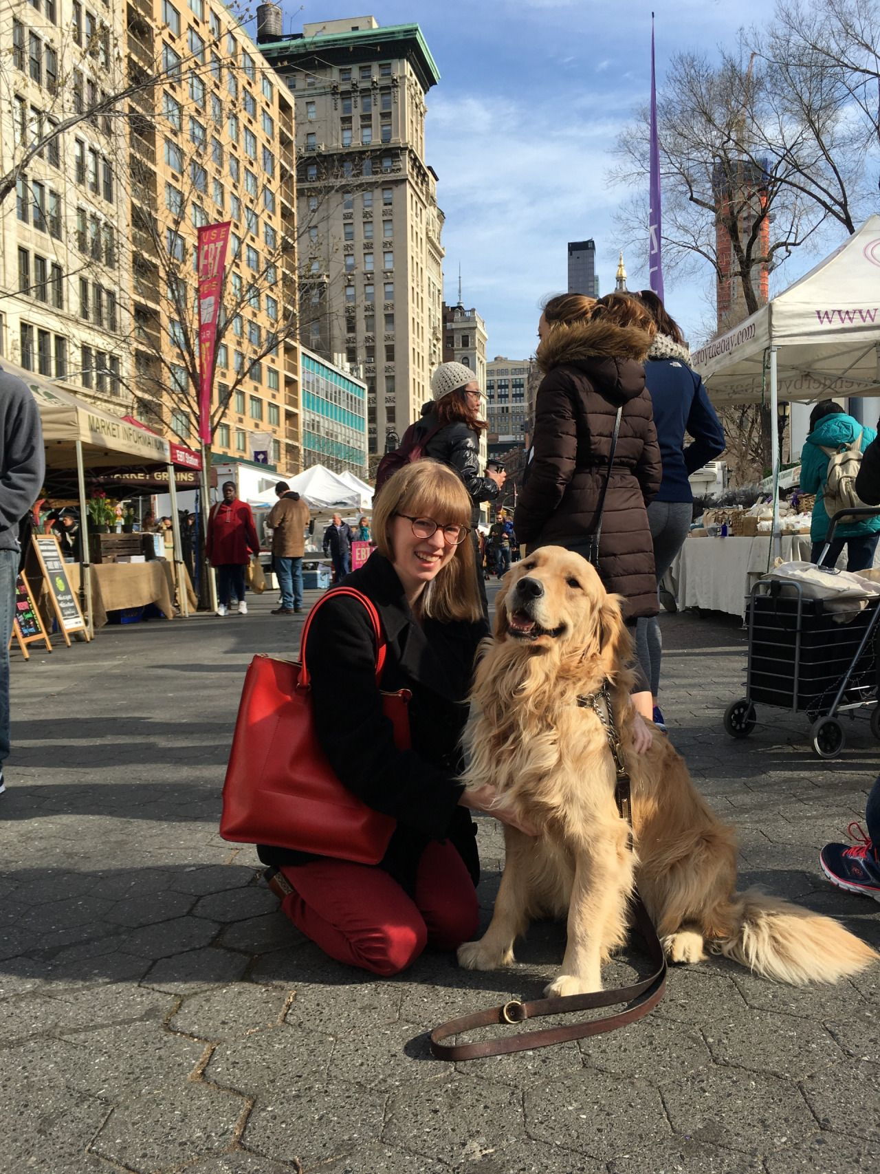 Un Golden Retriever A New York York New York Best Friends