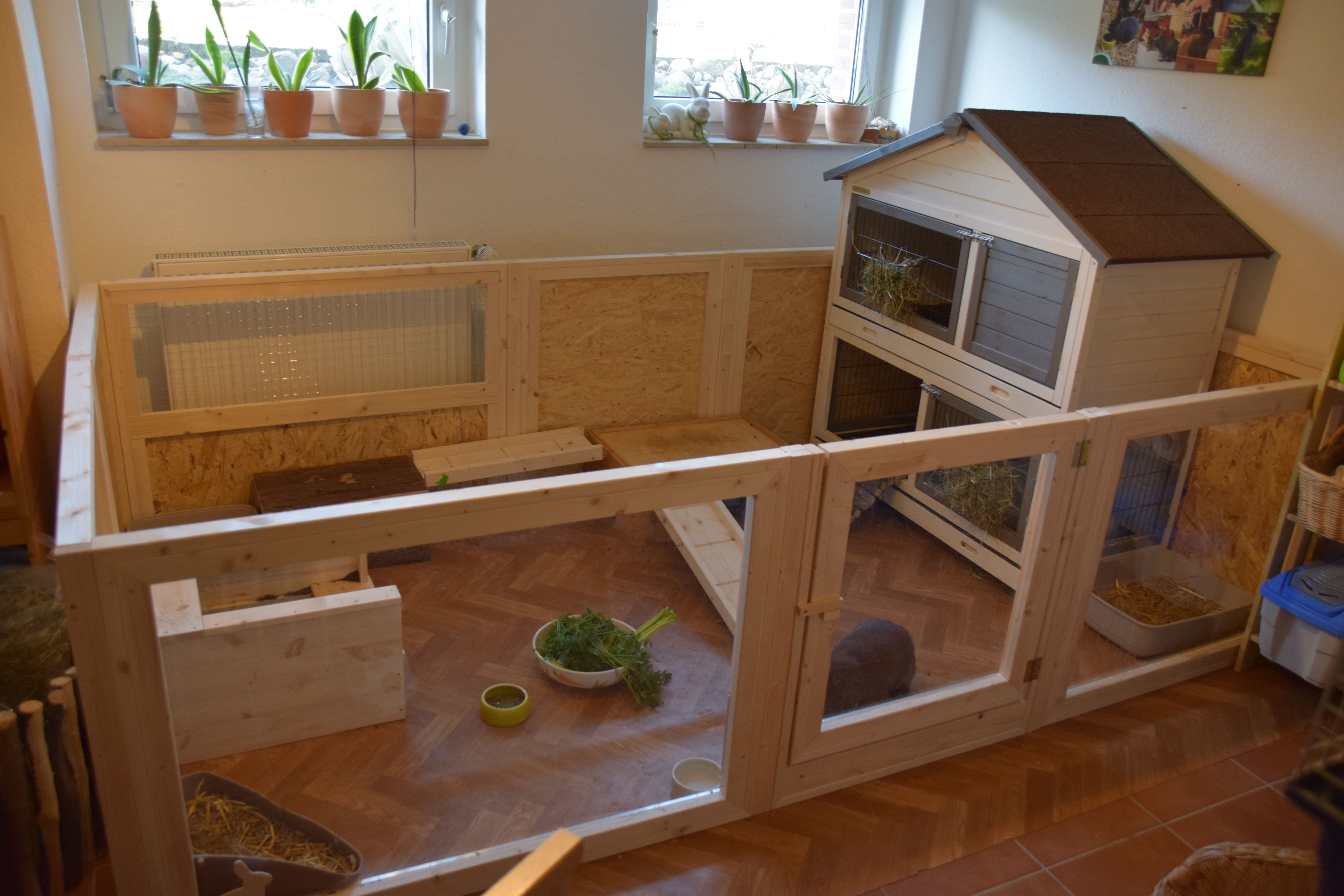Pin Auf Bunny Cages