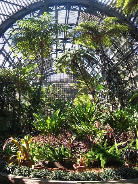 Delicieux Botanical Garden California Images | Gardens California Related Keywords U0026  Suggestions   Botanical Gardens .